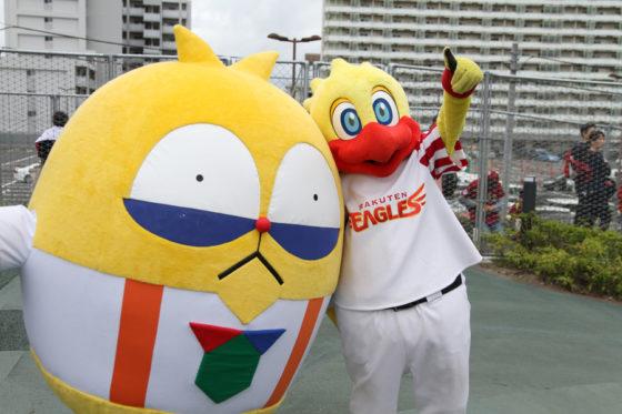 Koboパーク宮城では6球団共同企画「パ・リーグ 親子ヒーロープロジェクト」の第6弾が開催された【写真提供:PLM】
