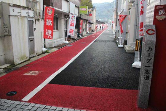 カープのキャンプ地である日南市に作られた「カープ一本道」【写真:広尾晃】