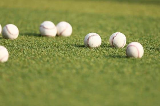 四国アイランドリーグplusは6月中での開幕を目指している