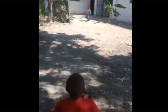 """ドミニカに""""超天才""""剛速球4歳少年現る!?(画像はスクリーンショットです)"""