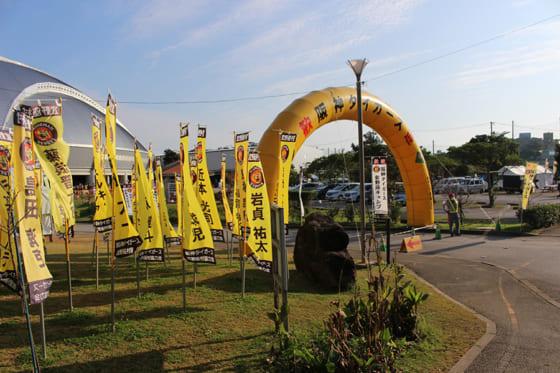 宜野座村キャンプを行う阪神【写真:広尾晃】