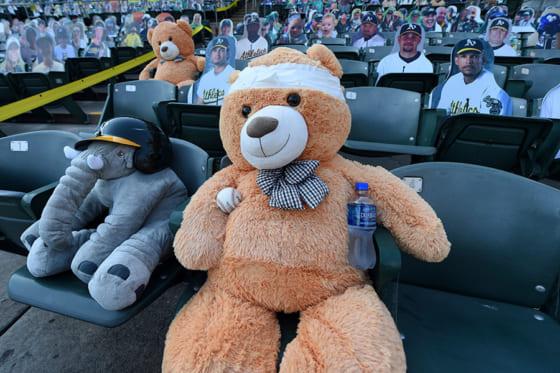 包帯を巻いて試合を観戦したテディベア【写真:AP】