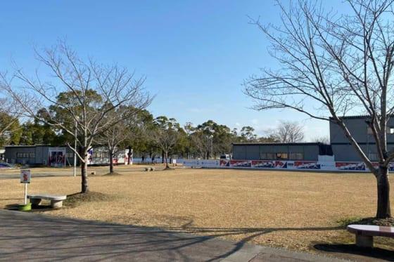 例年と異なり閑散とした生目の杜運動公園の芝生エリア【写真:福谷佑介】