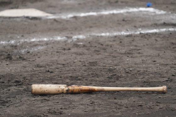 ヤンキース傘下1Aハドソンバレーの試合で何とも不思議な退場劇が…