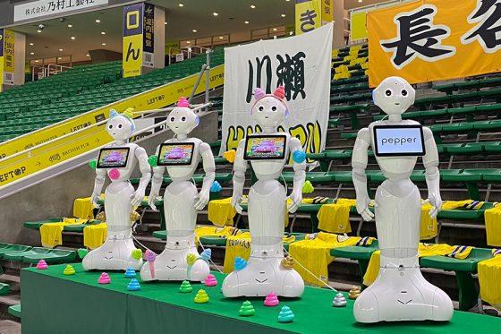 ソフトバンクのロボット応援団「ペッパー」たち【写真:福谷佑介】