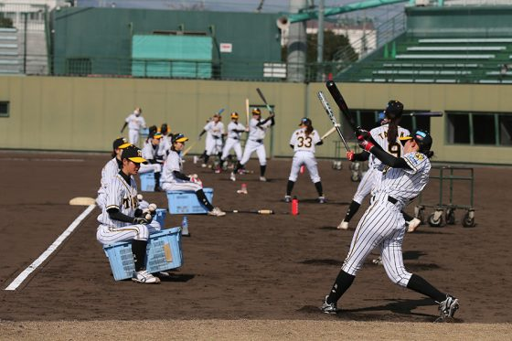 ロングティーを行う選手たち【写真提供:阪神タイガース】